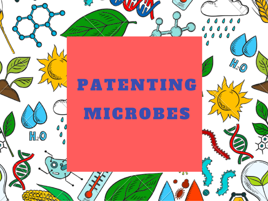 basic requirements for patentability of microorganisms can microorganisms be patented in india patenting of living organisms in india